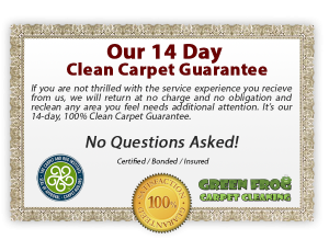 carpet cleaning services in Lexington Kentucky